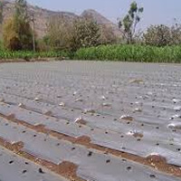 biodegradable compostable agricultural mulch films